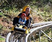 Luge sur rails Feeblitz