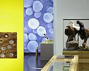 Musée d'histoire naturelle des Grisons