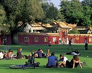 Chinese Garden Zürich