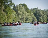 Geführte Tour: Kanu- / Schlauchbootfahrten auf der Reuss