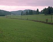 Un chemin pour bétail inhabituel