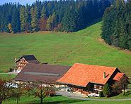Bauernhof Hintertann