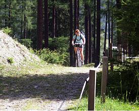 Landschaft und Trails geniessen