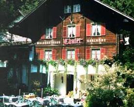 Waldgasthaus Chalet Saalhöhe