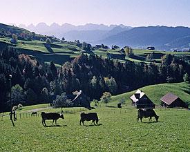Obstgarten-Route
